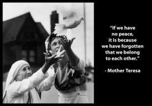 mother teresa dove