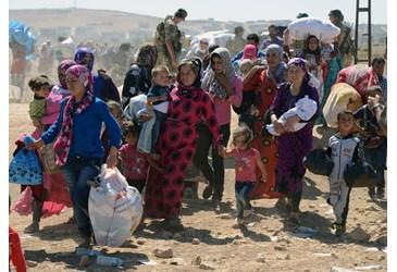 refugee vatican